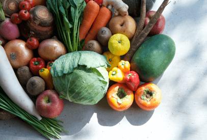 様々な野菜のイメージ